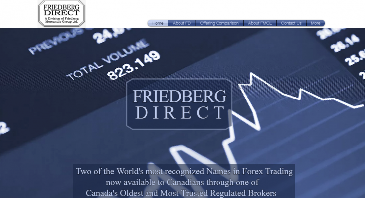 What is Friedberg Direct?